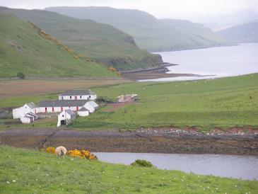 Isle of Skye near Dunvegan